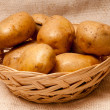 Potato tubers — Stock Photo