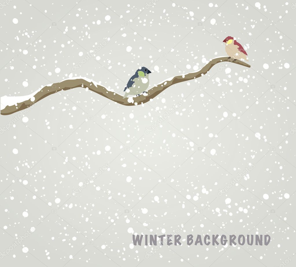 Two beautiful birds sitting on branch. Winter background. Vector illustration — Stock Vector #7922154