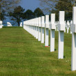 Royalty-Free Stock Photo: American cemetery crosses