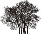 árvore de grupo — Vetorial Stock