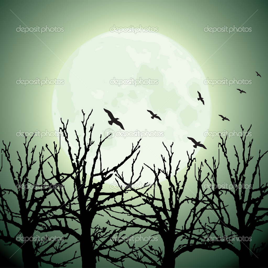 Фотообои Большая луна, деревья и птицы
