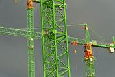 Drei grüne Kräne — Stock Photo