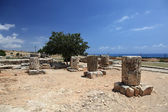 Ancient columns. Ruins of the temple of Aphrodite. Cyprus. — Stock Photo