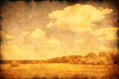 Grunge image of summer landscape. — Stock Photo
