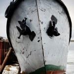 Dead boat — Stock Photo