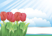 Beautiful background with tulips and clouds — Stock Vector
