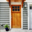Front exterior door of the town house — Stock Photo #7596836