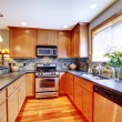 Stock Photo: Golden modern kitchen wtth stone back splash