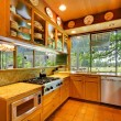 Kitchen on the horse ranch with nature views — Stock Photo #7598249