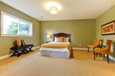 Large new green bedroom well furnished. — Stock Photo