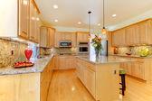 Arce lujo nueva amplia cocina con granito — Foto de Stock