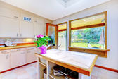Belle cuisine blanc avec la porte du jardin — Photo