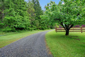 Apple garden and gravel road — Stock Photo