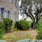Museum Renoir house. Cagnes-sur-Mer — Stock Photo #7605339