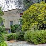 Museum Renoir house. Cagnes-sur-Mer — Stock Photo #7605351