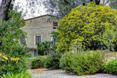 Museum Renoir house. Cagnes-sur-Mer — Stock Photo