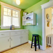 Green kitchen and garden room interior with buffer. - Stock Photo