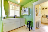 Green kitchen and garden room interior with buffer. — Stock Photo