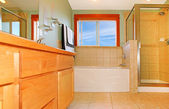 Beautiful large bathroom with shower and bathtub. — Stock Photo