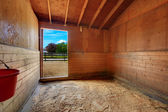 Interior of the horse stable house on the farm. — Stock Photo