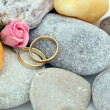 Wedding bands — Stock Photo #7911189