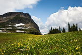 Meadow and Mountain — Stock Photo
