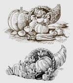 Thanksgiving or harvest cornucopia — Stock Vector