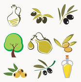 Collections of olive icons — Stock Vector