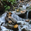 Waterfall in Harrison BC Canada — Stock Photo #6814603