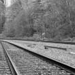 Macro railroad track with black and white color — Stockfoto