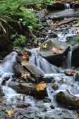 Waterfall in Harrison BC Canada — Stock Photo