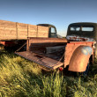 Vintage Farm Trucks — Stock Photo