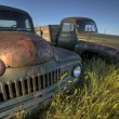 Vintage Farm Trucks — Stock Photo #6927291