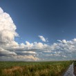 Prairie Road Storm Clouds — Stock Photo #6927537