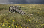Old Prairie Wheel Cart Saskatchewan — Stock Photo