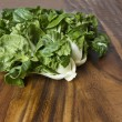 Fresh Green  Choy — Stock Photo
