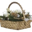 Holiday Basket — Stock Photo #7738390