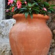 Pink flowers in old vase — Stock Photo #7147472