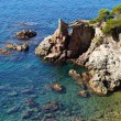 Lloret de Mar beach seascape — Stock Photo #7148145
