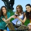 Girlfriends on picnic — Stock Photo #6753104