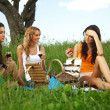 Girlfriends on picnic — Stock Photo #6753108