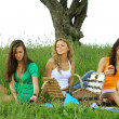 Girlfriends on picnic — Stock Photo #6753110