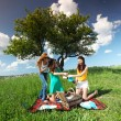 Girlfriends on picnic — Stock Photo #6831450