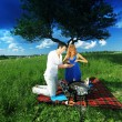 Picnic — Stock Photo
