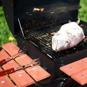 Grilled dorado — Stock Photo