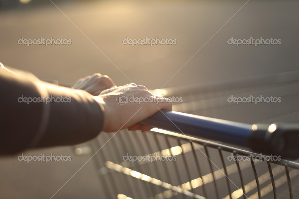 Take cart in hands go shoping — Stock Photo #6881373
