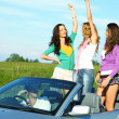Joy in cabriolet — Stock Photo #6890446