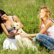 Girlfriends and dog — Stock Photo #6891893
