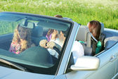 Friends trip in cabriolet — Stock Photo