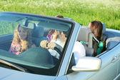 Voyage d'amis en cabriolet — Photo